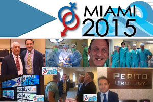 IV Congress of Medical Sexology