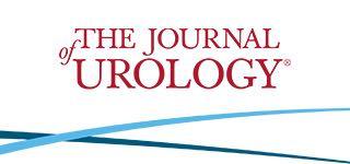 Pubblicato su Journal of Urology il nostro lavoro sulla tecnica di Scratch