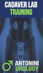 Cadaver Lab Training Center Penile Prosthesis Implant_dott_gabriele_antonini